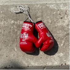 Перчатки Green Hill сувенирные красные ФБР big