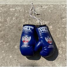 Перчатки Green Hill сувенирные синие ФБР big